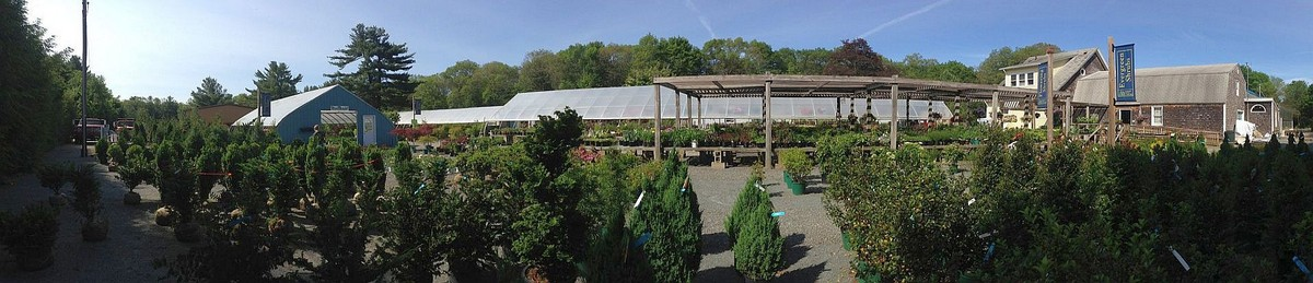 Since 1954, our family owned business has provided countless customers with  the joy that gardening and landscaping provide. Garden Center Near Me ... - Evergreen Tree And Landscape. 351 Oak Hill Av, Seekonk, MA 508.761.5505